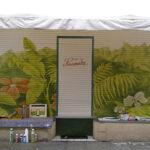 """4.80m breit, Abtönfarben + Schutzlack, am historischen Blumenladen Stammnitz, Dresden-Neustadt; Entwurf: """"die Farbküche"""""""